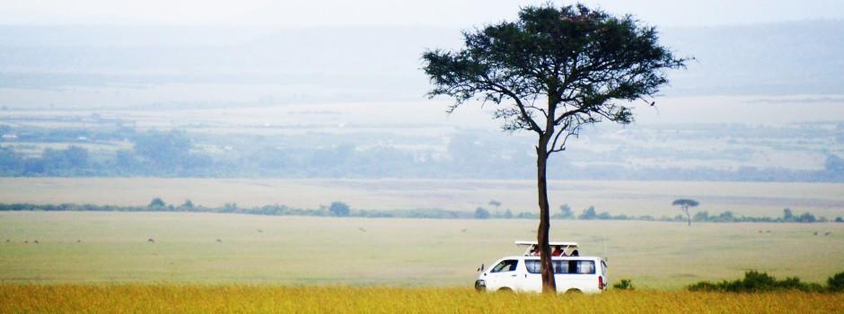 坦桑尼亚1